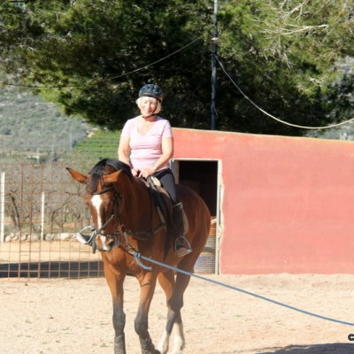 Ulldecona horse riding lessons