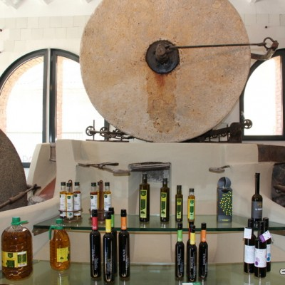 Olive oil tourist office Ulldecona