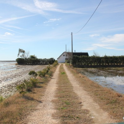 Houses in Delta de l'Ebre Natural Park