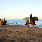 el raco de madremanya horse riding packages
