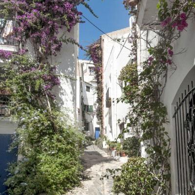 Cadaques Street With Flowers