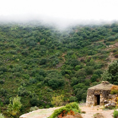 Castellon Traditional stone refuge with a foggy mediterranean landscape