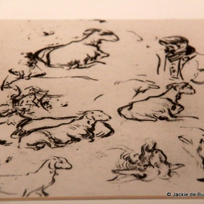 Picasso Sketches of Goats Horta de Sant Joan