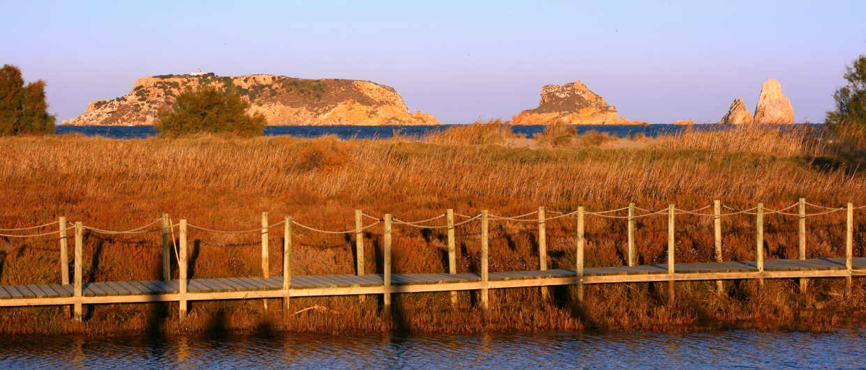 L'Estartit Marshlands With Medes Islands in Background
