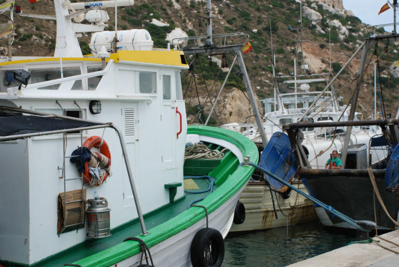 Calpe Fishing Harbour Costa Blanca