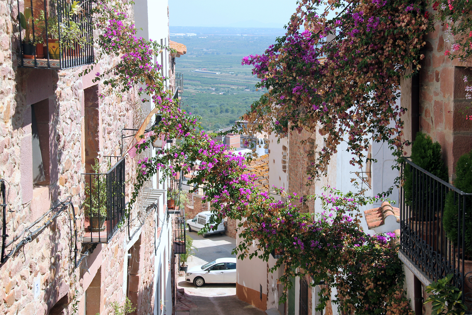 Vilafames Spain views with flowers